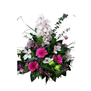 Centro orquídeas en gama de color