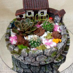 Terrario aldea con plantas