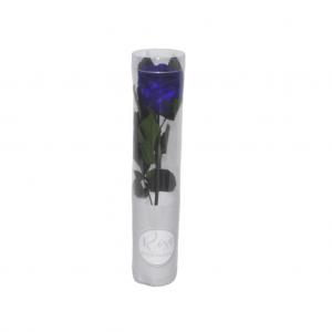 Rosa preservada en caja - Azul