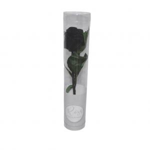 Rosa preservada en caja - Negro