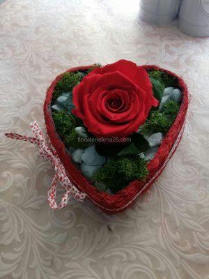Rosa eterna en base de corazón
