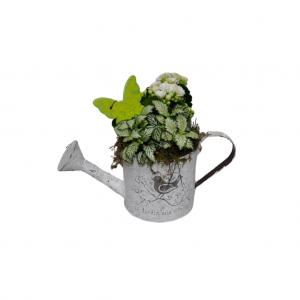 Regadera metálica blanca con plantas