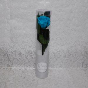 Rosa preservada color celeste