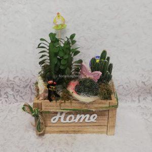 Cesta de Cactus
