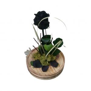 Rosa de la Bella y la Bestia negra