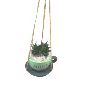 Taza colgante con cactus
